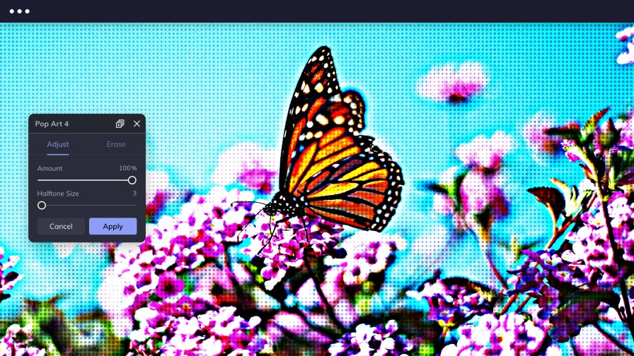 Image of a monarch butterfly sitting on flowers with BeFunky's Pop Art effects applied