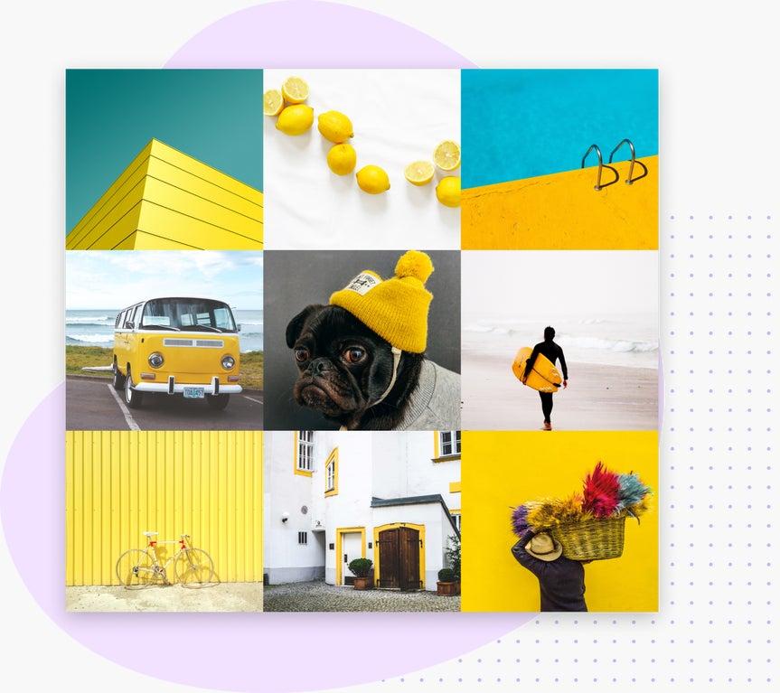 Photo grid instagram online
