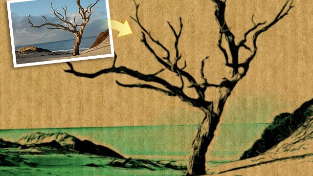 Inkify Effect on a tree photo