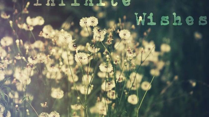 Plant, Flower, Blossom, Apiaceae, Daisy, Daisies