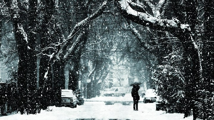 Nature, Outdoors, Blizzard, Snow, Winter, Storm