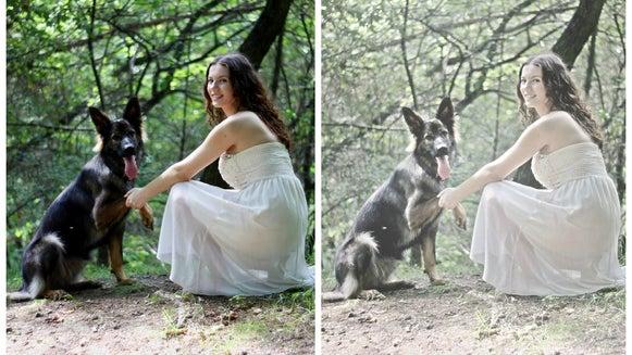 Clothing, Apparel, Person, Human, Dog, Animal