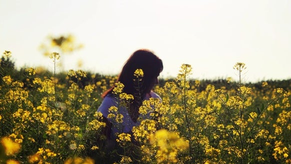 Field, Grassland, Outdoors, Plant, Person, Human