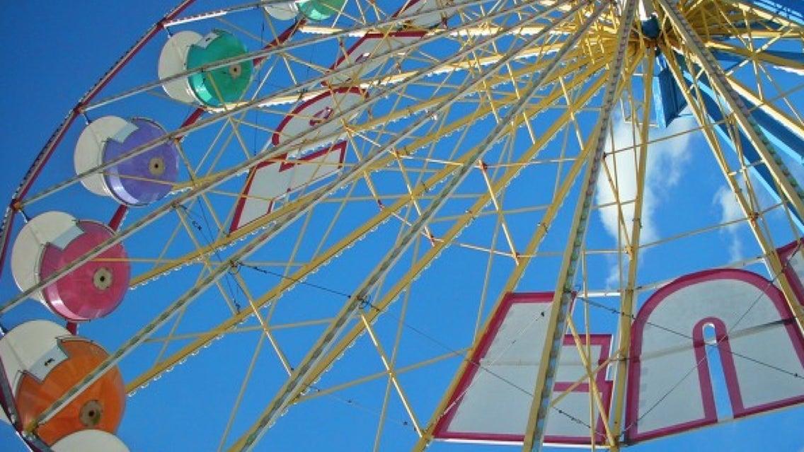 Ferris Wheel, Amusement Park, Theme Park