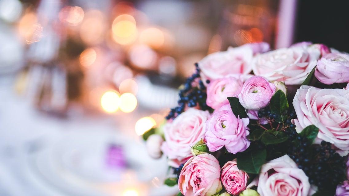 Plant, Rose, Flower, Blossom, Flower Bouquet, Flower Arrangement