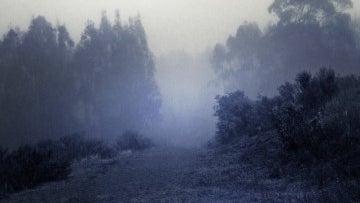 Nature, Weather, Outdoors, Fog, Mist