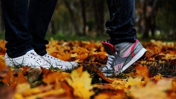 Clothing, Apparel, Shoe, Footwear, Leaf, Plant