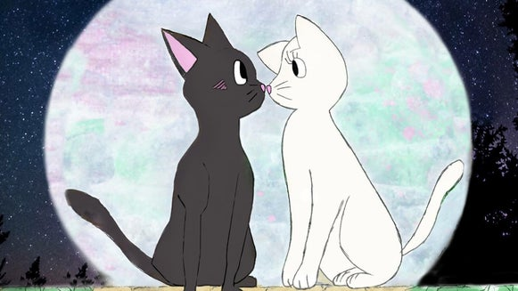 Black Cat, Cat, Mammal, Pet, Animal