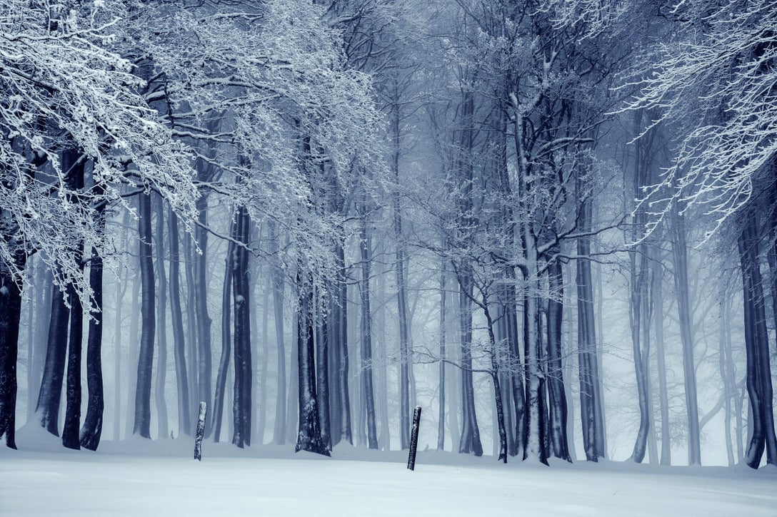 how to make winter photography look cooler