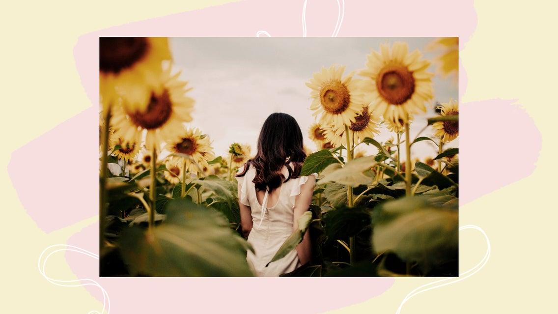 Plant, Person, Human, Flower, Blossom, Sunflower